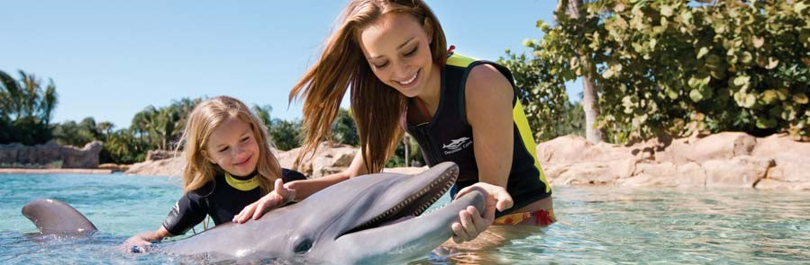 Discovery Cove